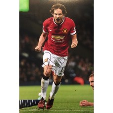 "Daley Blind Hand Signed 12x8"" Photograph"